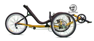 Terratrike Path Recumbent Trike Bicycle Man
